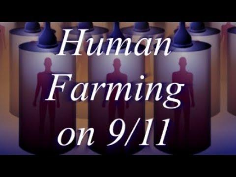 Human Farming on 9/11
