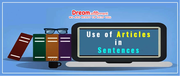 use of articles in sentences