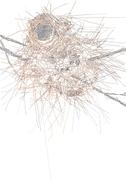Nehemiah - Yizwa imithandazo Yethu (Nest - SA)