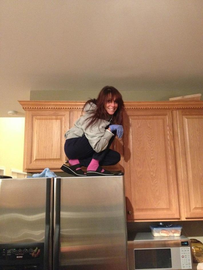 hamster on the fridge