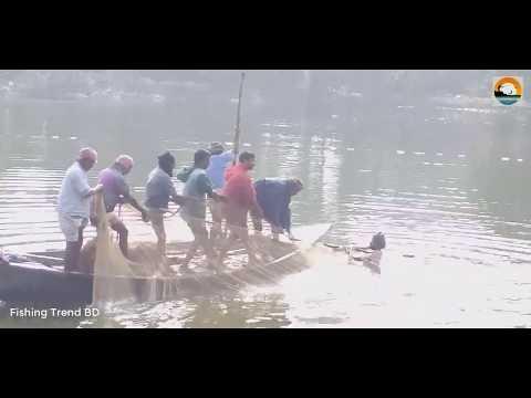 Net Fishing In Pond   Best Net Fishing   Fishing Skills
