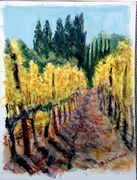 Portola Vineyards1
