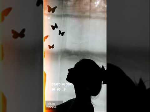 Del libro la voz de mi silencio. Cuando un hombre ama a una mujer.  Sígueme en Facebook.