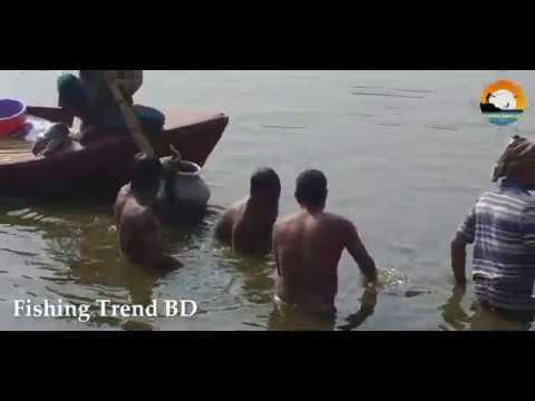 Catching Fish By Hand | Best Hand Fishing | Pond Fishing