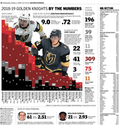 2018-19 Golden Knights look back