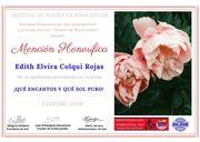 sva  mecion honorifica que encanto Edith Elvira Colqui Rojas