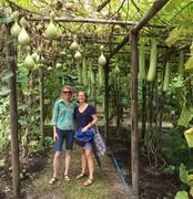 LFG Event: David's subtropical garden and food forest