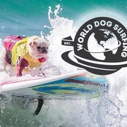5th Annual World Dog Surfing Championships