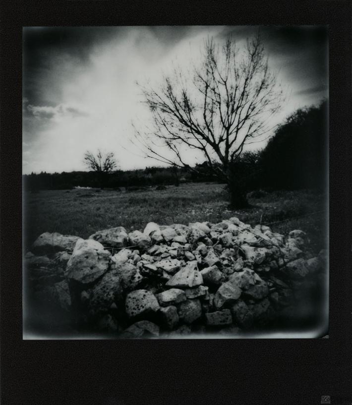 My countryside • 04.03.20