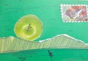 Greek Green Spring2