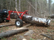 Webinar - Best Practices for Small Wooded Acreage (1 hr each)