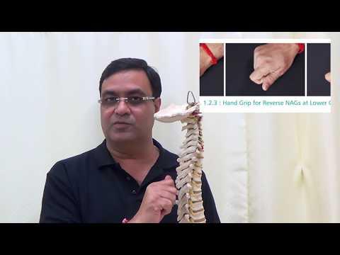 Capri manual therapy | Capri physiotherapy | Capri physiotherapy clinic delhi | Capri spine delhi | Spine clinic delhi | Physiotherapy clinic delhi | Manual therapy clinic delhi