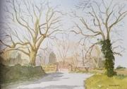 Landscape & Rural
