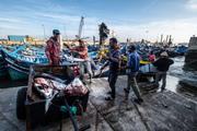 Essaouira i pescatori