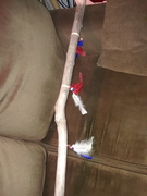patriotic walking stick