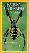 Webs of Intrigue (Explorer, 1992)