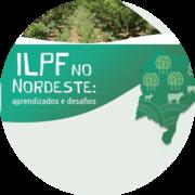 iLPF no Nordeste: Aprendizados e Desafios