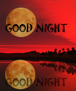 Good Night Image For Whatsapp1