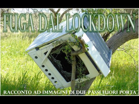 Fuga dal lockdown