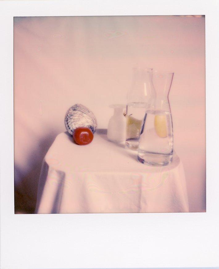 PolaroidQuarantine0044