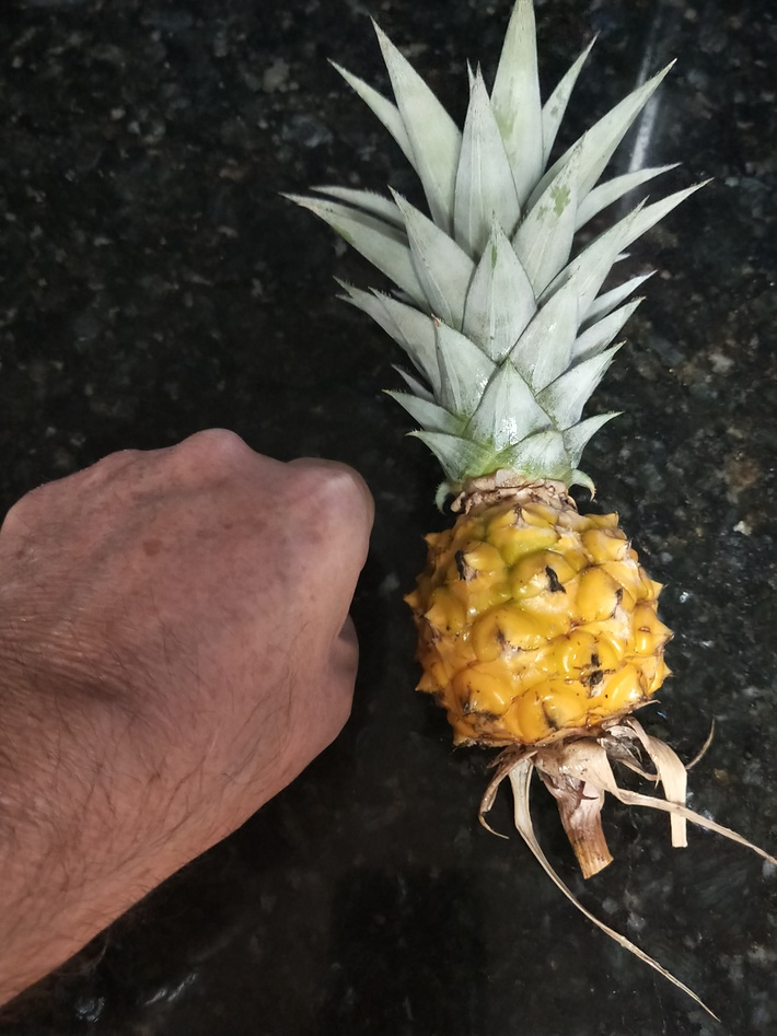 Tiny pineapple
