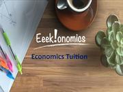 Economics Tuition online