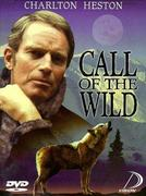 The Call of the Wild (1972)