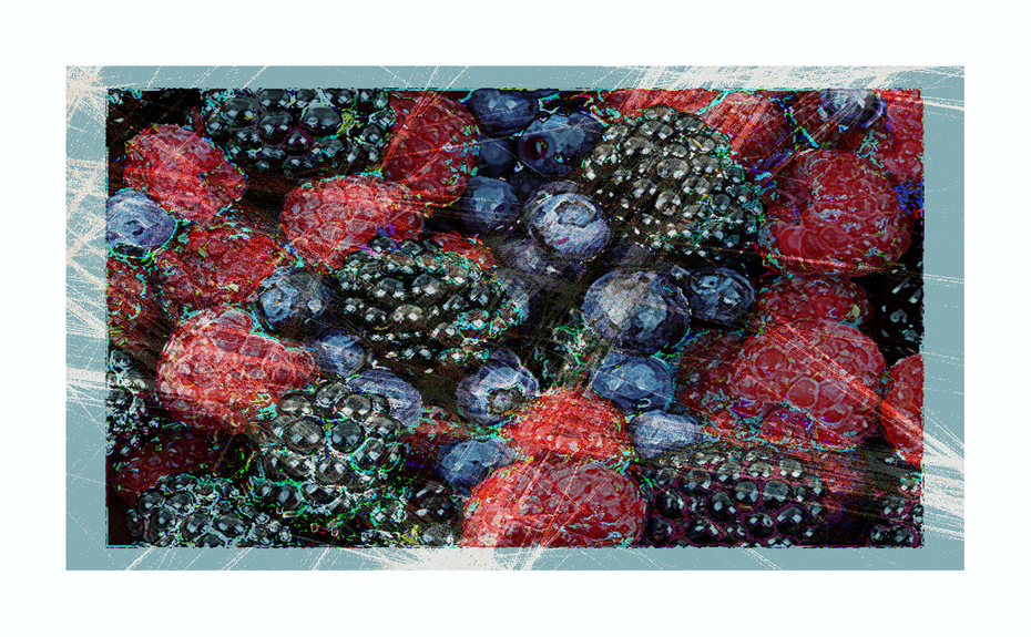 Blue berry hill 03b+ canvas