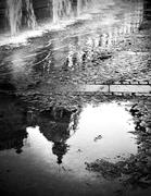 genoa reflected