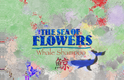 From the Sea of Flowers...Whale Shampoo for You