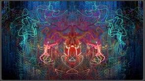 Vishnu Pollock Fast (silent)