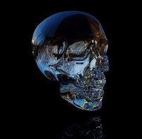 Crytstal Skulls