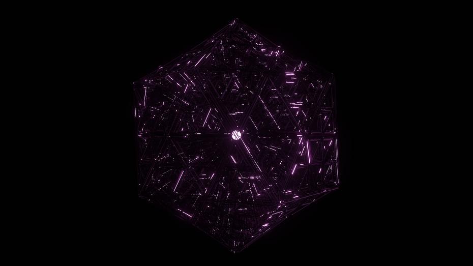 tetra purple