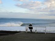 Bench Surfcheck