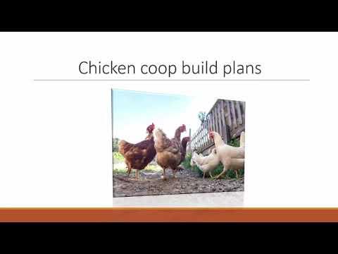 Do It Yourself Hen Coop Unique Style