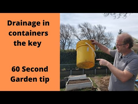 Drainage for containers- 60 Second Garden Tip