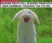 2020 murder rabbits