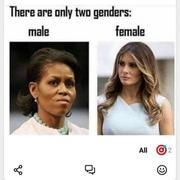 2020 gender
