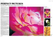 Oregonian Homes & Gardens photo contest