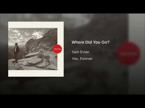 Sam Evian - Where Did You Go?