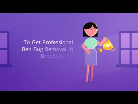 OCP Bed Bug Exterminator Brooklyn NY - Bed Bug RemovalOCP Bed Bug Exterminator Brooklyn NY - Bed Bug Removal
