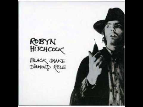 Robyn Hitchcock - Meat