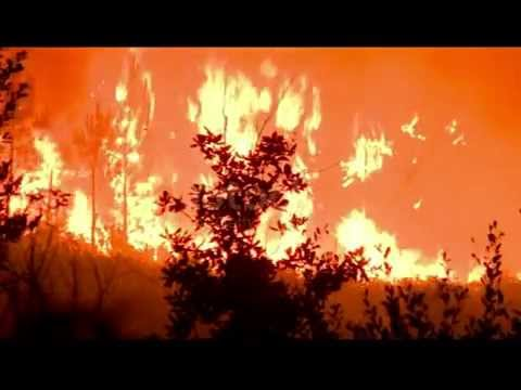 Fire Storm Video