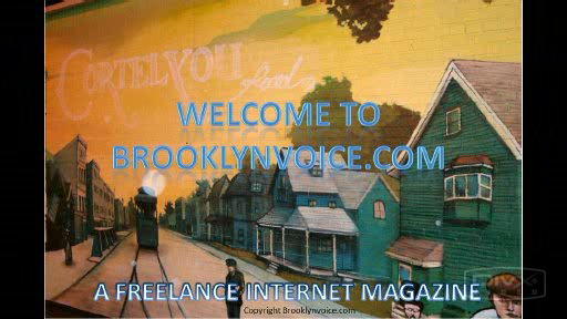 About brooklynvoice.com