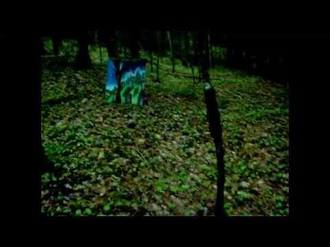 Marcel Flisiuk's Vernissage in the Woods.