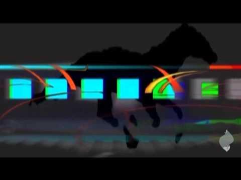 Running (horseshoe)