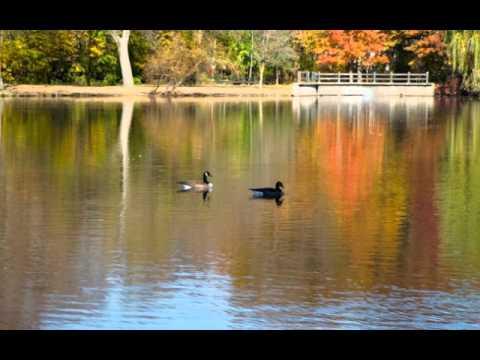 (Staten Island) Beautiful by Meshell Ndegeocello