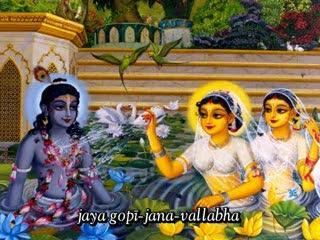 Krishna in Vrindavana