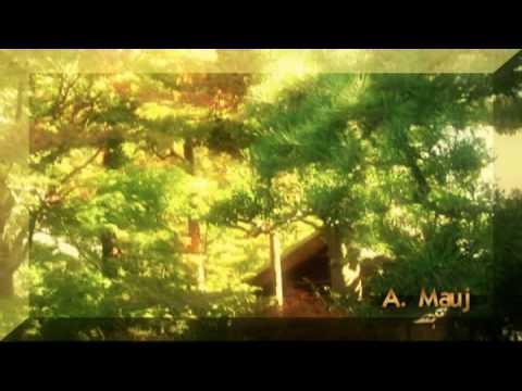 Deus Pode! Narracao de Chico Xavier - Mensagem de Amor e Paz