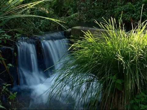 Sons da Natureza: Água Corrente